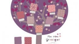 décoration chambre garçon prune