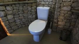 décoration wc - toilettes tendance