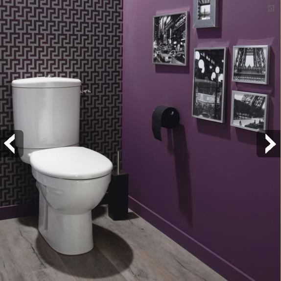 Style D Coration Wc Toilettes Tendance