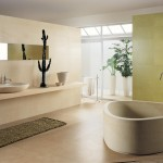 idée déco salle de bain blanc
