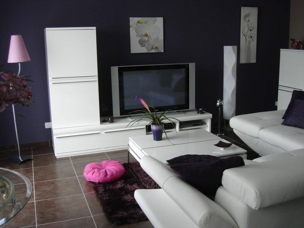 D co suivante - Decoration salon violet ...