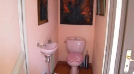 idée déco wc - toilettes moderne