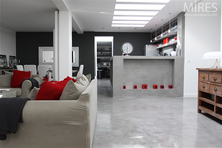 mod le ambiance salon gris et rouge. Black Bedroom Furniture Sets. Home Design Ideas