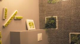 id e d co wc toilettes design. Black Bedroom Furniture Sets. Home Design Ideas