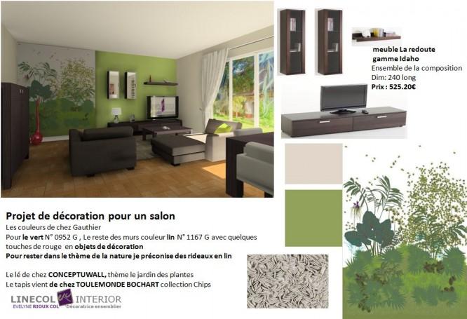 guide d co salon nature. Black Bedroom Furniture Sets. Home Design Ideas