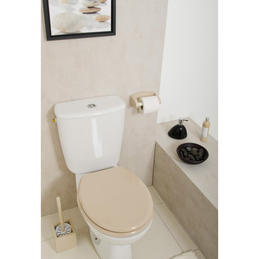 D coration wc toilettes beige for Decoration maison wc design