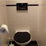 décoration wc - toilettes beige