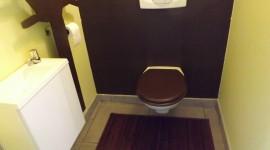 décoration wc - toilettes nature