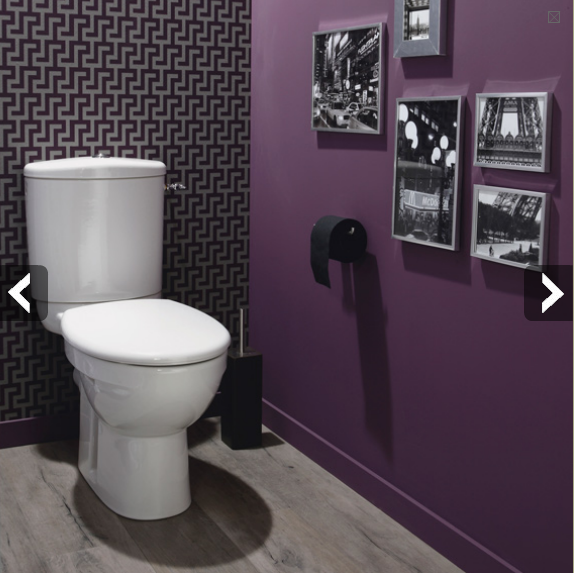 Jolie id e d co wc toilettes gris et violet for Idee deco photo