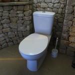 idée déco wc - toilettes nature