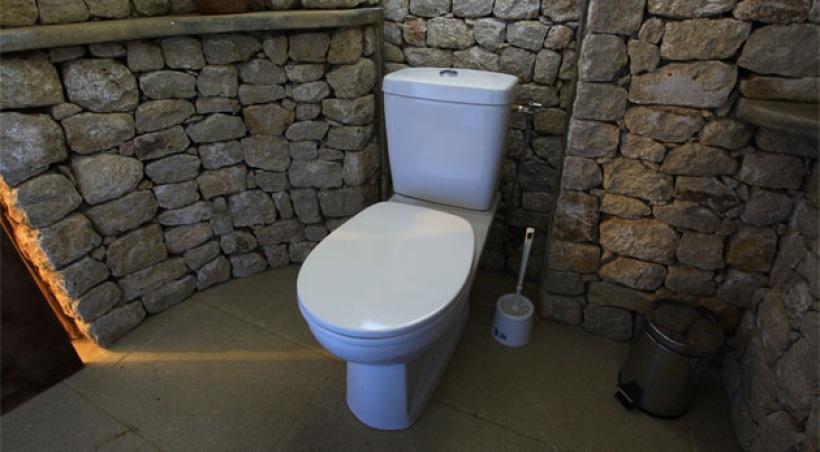 Charmant Idée Déco Wc   Toilettes Nature