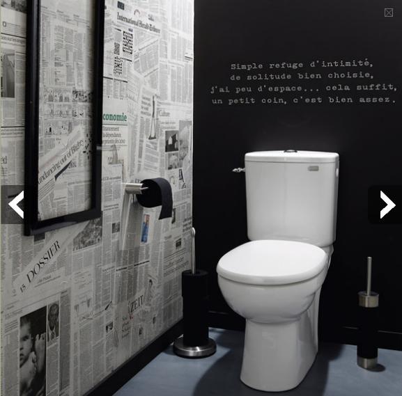 Quelle d co wc toilettes gris et blanc for Deco gris et blanc