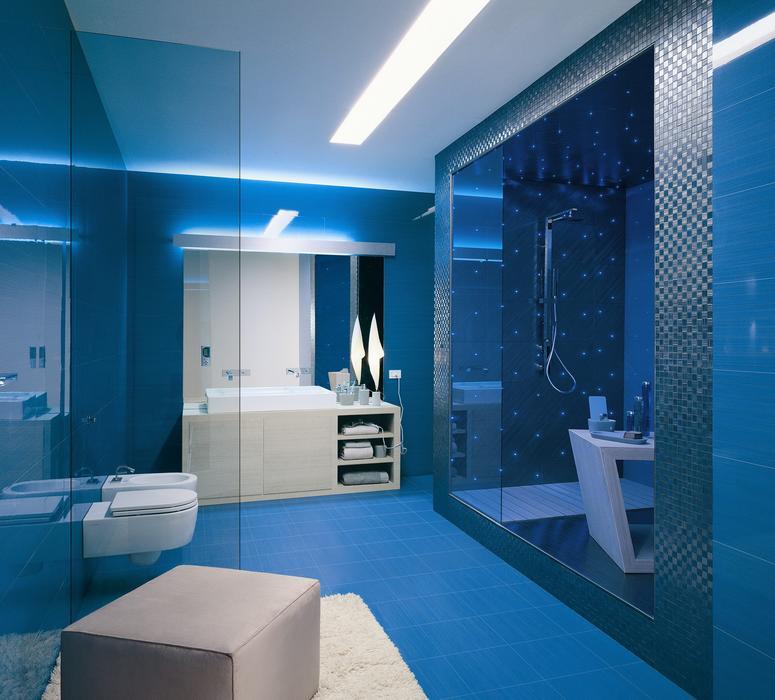 guide idée déco wc - toilettes bleu