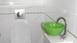 idée déco wc - toilettes vert