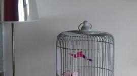 décoration chambre bébé gris et violet
