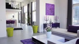décoration salon violet