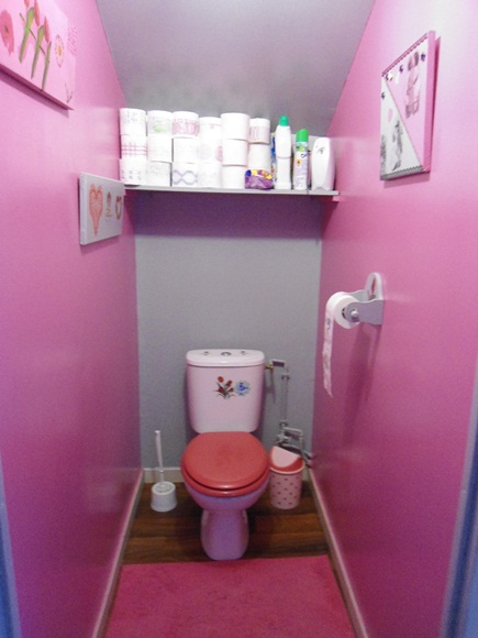 Inspiration d coration wc toilettes rose for Decoration maison fushia