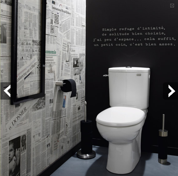 Conseil ambiance wc toilettes moderne for Decoration maison wc design