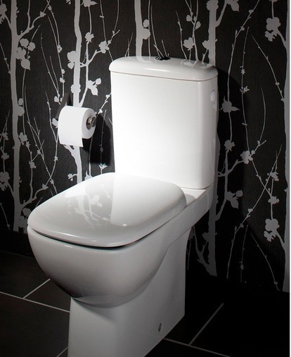 Nouvelle d co wc toilettes tendance for Deco toilettes wc