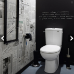 décoration wc - toilettes gris et blanc